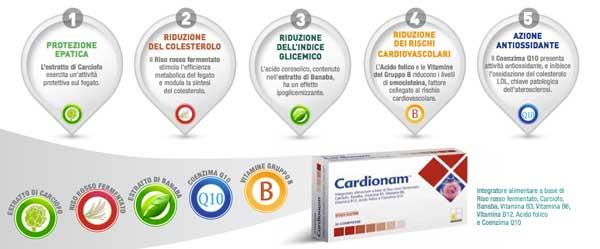 metabolismo-grassi-cardionam