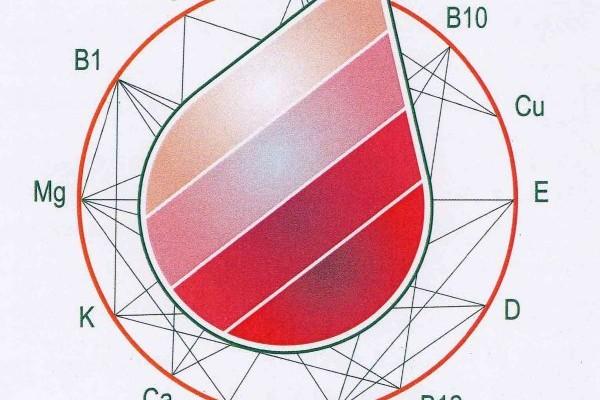mineralogramma capello