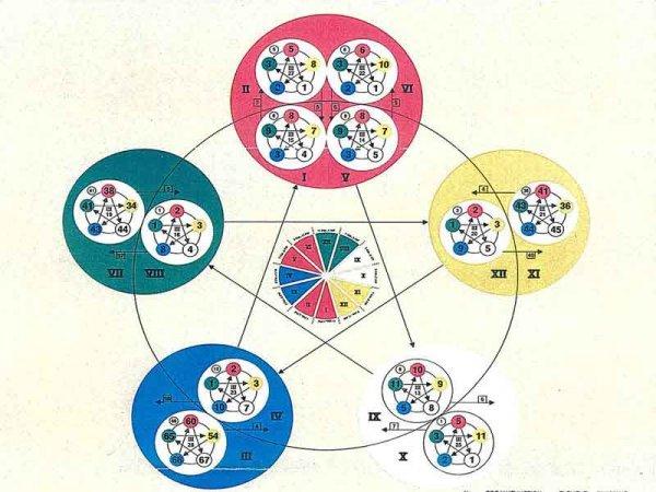 cinque elementi e cicli