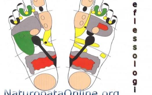 reflessologia mappa del piede