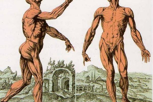 postura benessere