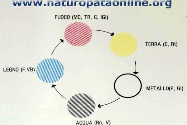 shiatsu e cinque elementi