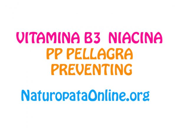 vitamina b3 niacina