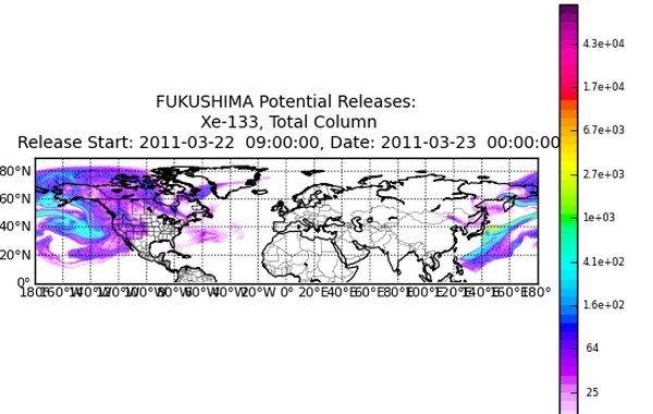 fukushima tumore 2021