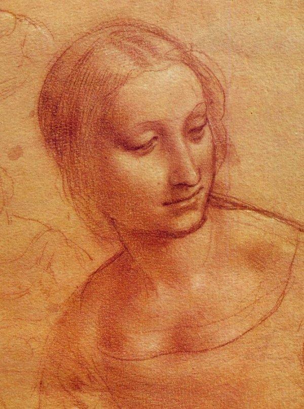 disegno donna leonardo