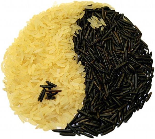 riso ying yang
