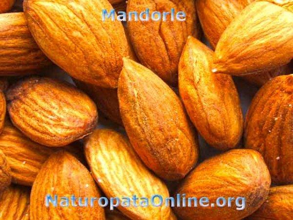 mandorle sgusciate antiossidanti naturali