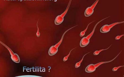 ovulo spermatozoi