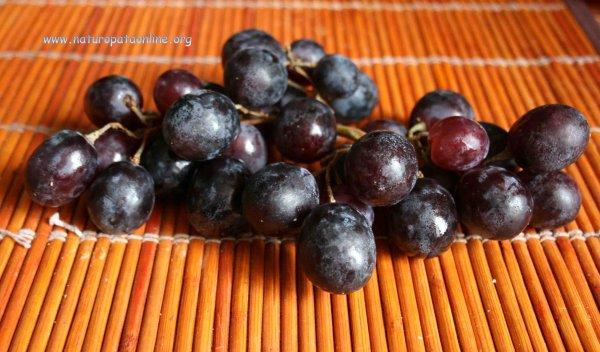 uva nera ottobre