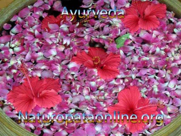 ayurveda scienza indiana fiori viola