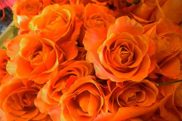 colore-arancione-cromoterapia