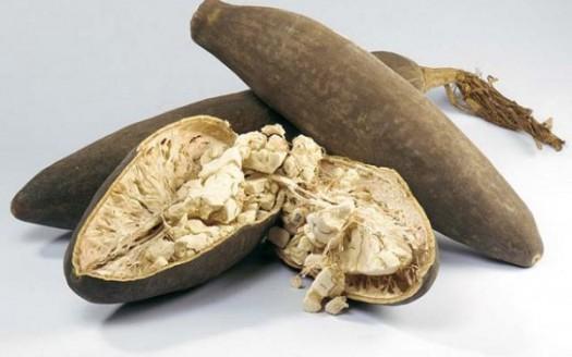 semi baobab