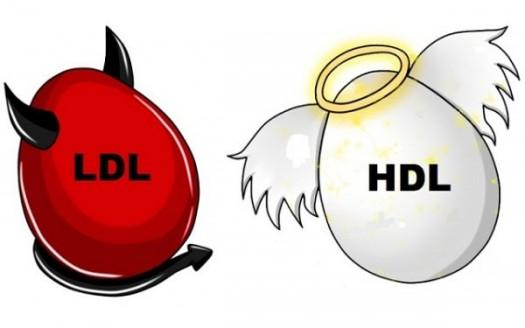 Colesterolo HDL basso: cosa mangiare e come aumentarlo ...