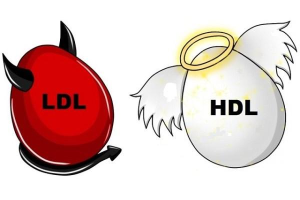 colesterolo alto ldl hdl