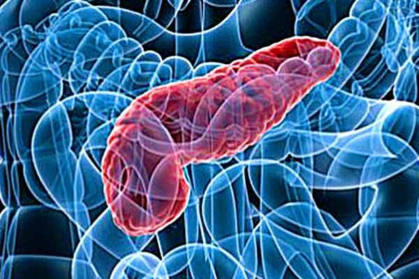 alimentazione per pancreatite cronica