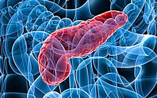 pancreas-pancreatite