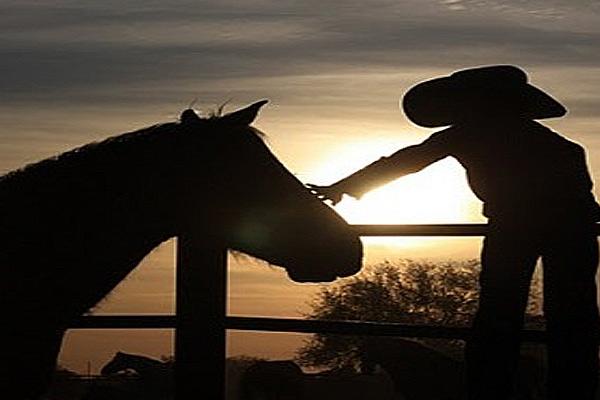 bambino-cavallo-ippoterapia