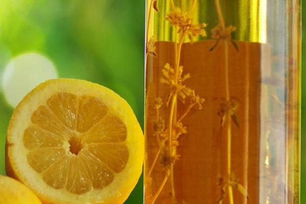 olio-limone-rimedi-nonna-capelli