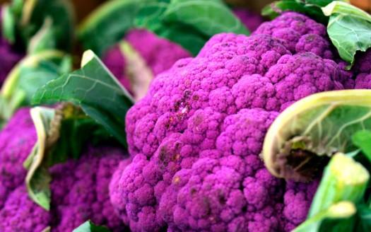 Broccoli origin