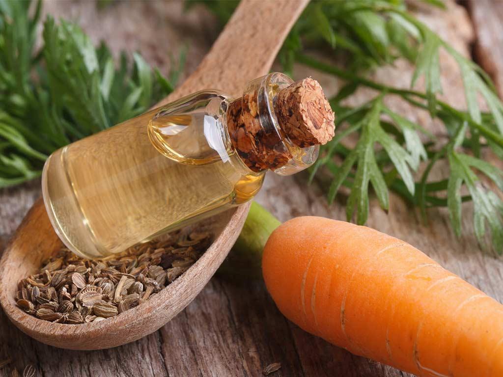 olio essenziale di carota
