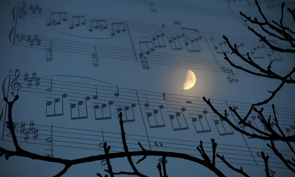 sonata al chiaro di luna