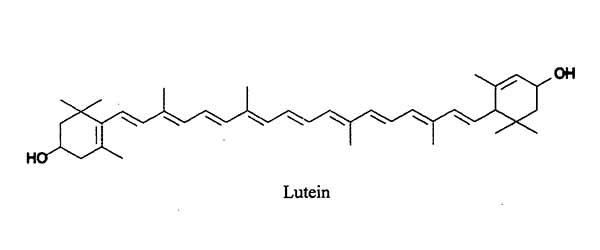 luteina molecola