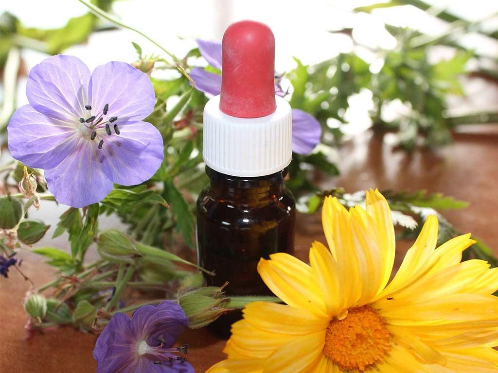 Terapia floreale
