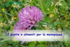 Piante per la menopausa