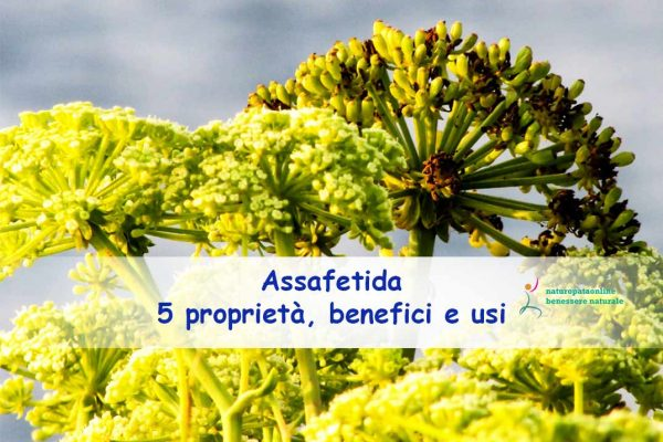 Assafetida