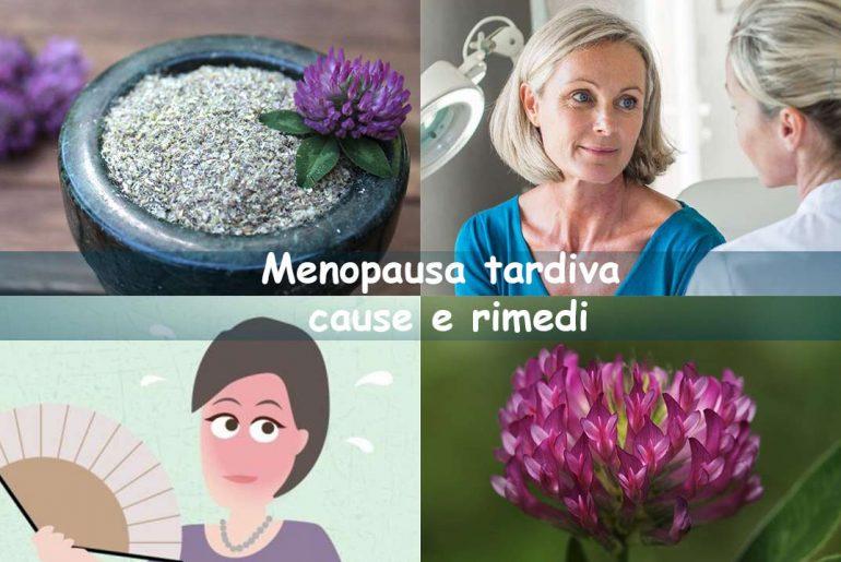 Menopausa Tardiva