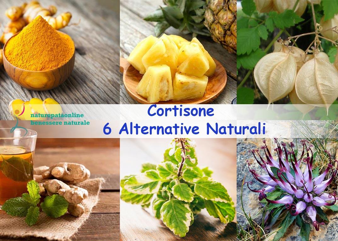 Cortisone alternative naturali