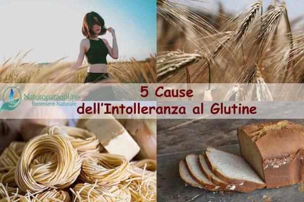 5 cause dell'intolleranza al glutine