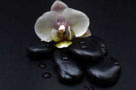 pietre nere