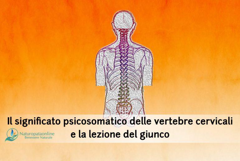 significato-psicosomatico-vertebre