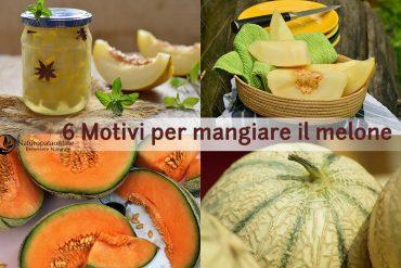 melone-valori-nutrizionali