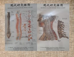 Moderna-Agopuntura-cinese