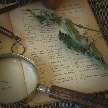 Il ruolo del naturopata